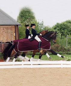 Talk about extended trot!