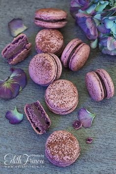 chocolate - violets macarons - Morpho Fabulous Cafe in Chisinau photo by… Delicious Desserts, Yummy Food, French Macaroons, Pink Macaroons, Macaron Flavors, Macaron Cookies, Macaroon Recipes, Think Food, French Pastries
