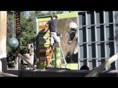 Denver Zoo custom design, printed, and wrapped elephant transportation crate
