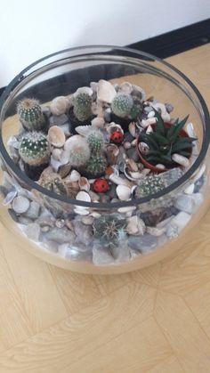 Terrarium, Flowers, Home Decor, Homemade Home Decor, Terrariums, Royal Icing Flowers, Flower, Decoration Home, Florals