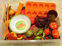 You can buy sensory bins. Preschool Ideas, Toddler Activities, Teaching Ideas, Green Lentils, Autumn Colours, Mini Pumpkins, Sensory Bins, Play Therapy, Fall Leaves