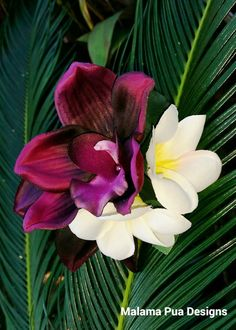TROPICAL HAIR Clip  Hawaiian Silk Flower Clip by MalamaPua on Etsy #bridalbouquet #bridal #wedding Ehawaii