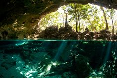 Dos Ojos Cenote, Quintana Roo, Mexico. It looked stunning looking outside from the water!!