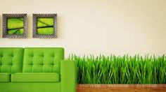 modern interior room with nice furniture inside living room interior royalty free stock images stock illustration