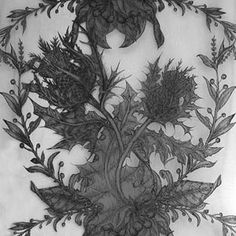 Really unusual and beautiful thistle #lace