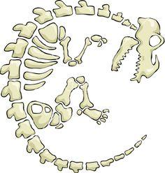 dinosaur bones template - Google-søgning