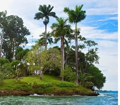 Hospital Point, Bocas del Toro, Panama: we kayaked over and snorkeled here!