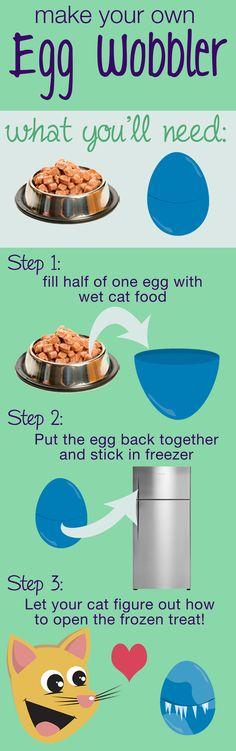 Do it yourself cat enrichment toy- The Egg Wobbler! Visit http://tricityvet.com…