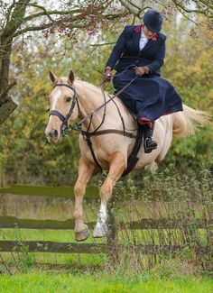 You should not be jumping a horse side saddle. And shaved. Should not be hanging onto the reins.