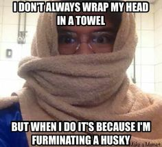 -Repinned- Furminating a Husky. Groomer humor.