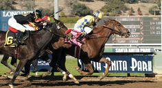 Forever Darling. 8th- Breeders' Cup Juvenile Fillies, 1st- Santa Ynez Stakes (#8 on the leaderboard)