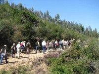Monchique Passeios Na Serra