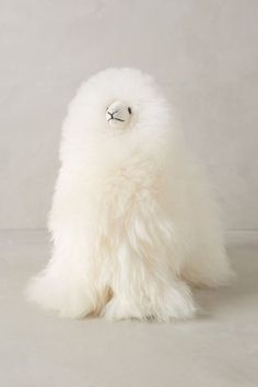 Furry Fable Animal - anthropologie.com