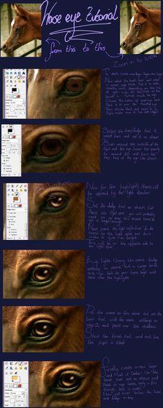 Horse Eye Tutorial by oOo-Alouette-oOo.deviantart.com on @deviantART