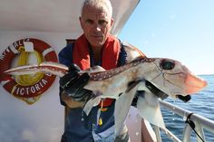 Prehistoric Terror – Jeremy Wade with a Rat Fish off the coast of Vancouver Island Jeremy Wade, John Wade, Ocean Monsters, River Monsters, Wading River, Monster Fishing, Cat Boarding, Best Fishing, Vancouver Island