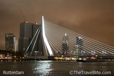 New Post: Rainy Day In Rotterdam  The glow of the city lights reflected back down from the clouds to create a sort of metallic silvery glow on everything that made the modern cityscape seem like it was a glistening movie set.  After going through my photos, it reminds me a lot of The Great Gatsby or Fritz Lang's 1927 flick, The Metropolis.