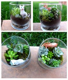 I really like the idea of putting something odd in with the plants - such as a toy cat (: