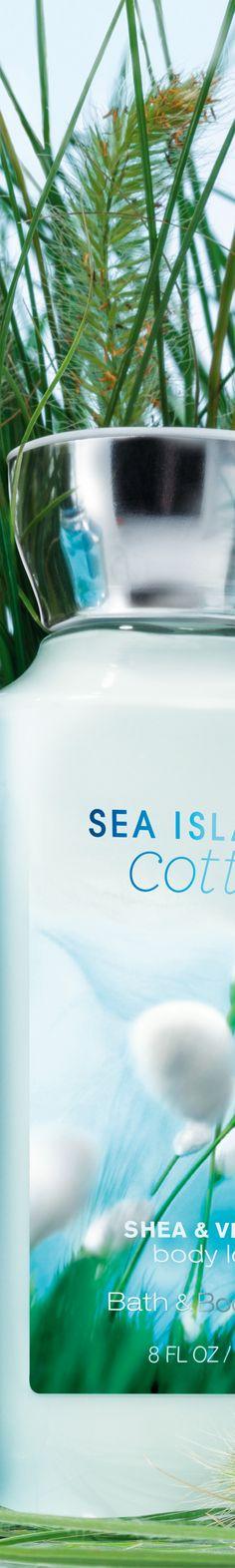 #SeaIslandCotton