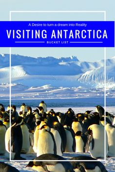 When I think what comes to the top of my own bucket list, Visiting Antarctica is certainly top of the list for destinations to visit. Antarctica Cruise, Edinburgh Travel, Go Outdoors, Paragliding, I Want To Travel, Culture Travel, List, Plan Your Trip, Rafting