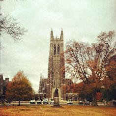 Duke University. My alma mater!