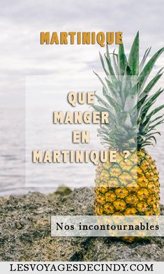 Was in Martinique zu essen? Unsere 14 Must-Haves! Les Bahamas, French West Indies, Slow Travel, Destination Voyage, Destin Beach, Most Beautiful Beaches, Blog Voyage, Digital Nomad, New Adventures