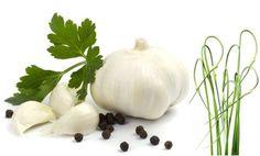 #Fresh & #Pressed #Garlic – An all around health boosting herb