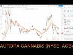 aurora canabis finanzen.net