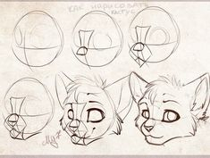 A few muzzle tricks! by Jay-Pines - Drawing tips and stuff - Cat Drawing Tutorial, Drawing Base, Manga Drawing, Drawing Sketches, Drawing Tips, Animal Sketches, Animal Drawings, Art Inspiration Drawing, Furry Drawing
