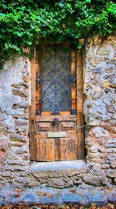 Door with vine Crécy la Chapelle ~ Seine-et-Marne ~ France