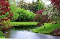 Spring Landscape 1 by Jennifer Englehardt Landscape Wallpaper, Scenery Wallpaper, Landscape Paintings, Most Beautiful Gardens, Beautiful World, Beautiful Scenery, Beautiful Places, Scotland Wallpaper, Spring Scenery