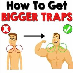 Having well developed traps can make all the difference when it comes to looking like you lift while wearing t-shirts.-Most people think that the only exercise to hit your traps is shrugs. Gym Workout Chart, Workout Plans, Workout Men, Weight Training Workouts, Gym Training, Gym Workouts, Workout Exercises, Training Tips, Exercise Workouts