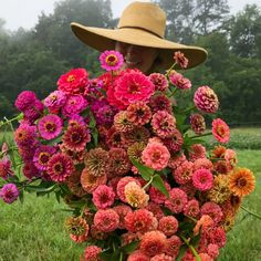 My Favorite Zinnia Varieties + A Farm Update — Flourish Flower Farm – frisuren hochzeit Asheville, Zinnia Garden, Cut Flower Garden, Flower Farmer, Design Floral, Gardening, Farm Yard, Zinnias, Vegetable Gardening