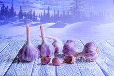 Digital Art - Garlic And Winter by Veikko Suikkanen , Fine Art America, Garlic, Digital Art, Instagram Images, Design Inspiration, Wall Art, Winter, Artist, Artworks