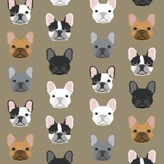 © Pet Friendly - Super cute french bulldog fabric.  Best frenchies french bulldog print girly blush for trendy decor and home textiles.  Sweet Frenchies blush design.  French Bulldog owners will love this trendy blush pet dog fabric.