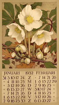 1932 ¤ Januari Februari. Calendar 6 leaves : col. ill. ; 40 x 22 cm. Créateur: Voerman, Jan, Jr. ( illustrator ) 1932 elleborus // janvier février Roses de Noël