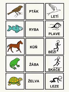 Álbumes web de Picasa Autism Activities, Activities For Kids, Baby Time, Pictogram, School Classroom, Kids Education, Speech Therapy, Adhd, Montessori