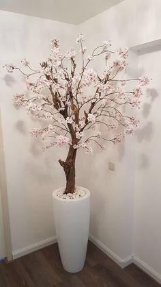 Licht roze bloesemboom in hoogglans witte pot. Interesse, vraag naar de mogelijkheden op info@annefleurs.nl