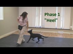 Best way to teach a puppy to come when called (K9-1.com) - YouTube