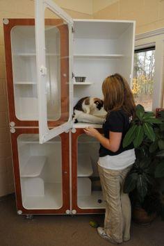 Cat Condo Boarding - J.M. Pet Resort
