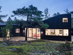 Villa Blåbär: the house in Sweden designed by pS Arkitektur