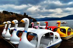 Fleet of Swan Boats on Lake Ashi, Japan Day Trips From Tokyo, Pool Floats, Small Boats, Photo Series, Cool Pools, Honeymoon Destinations, Asia Travel, Fuji