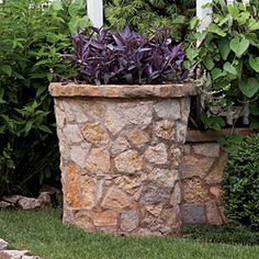 Spectacular Container Gardens: Purple Heart < Spectacular Container Gardening Ideas - Southern Living Mobile