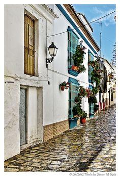 "Juana Maria Ruiz... ""Narrow streets series: Wet cobblestones in Estepona"""