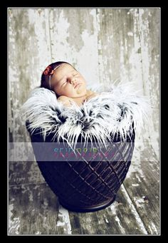 Newborn Baby Grey Frosted Fur Nest Photo Prop  by CustomPhotoProps, $26.00