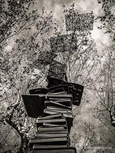 Ces pages de livres opèrent à cœur ouvert comme jaillies d'un ouvrage découpé dans le ciel les mots de métal s'emmêlent  aux branchages. Rois sans le savoir ils perdent connaissance à mesure qu'ils s'élèvent au-dessus de l'arène. BT
