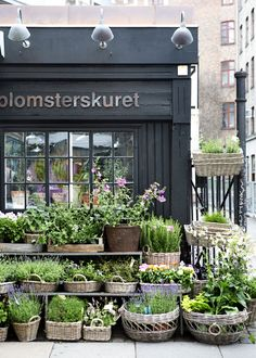 """Blomsterskuret ~ An indescribably cosy """"flowers shed."""" Martin Reinicke is the flower decorator and a master of creative ideas in working with botanicals; with attention to the slightly more arvant-garde plants; wonderful eye toward extra beautiful bouquets. #Copenhagen #Blomsterskuret #Vesterbro"""