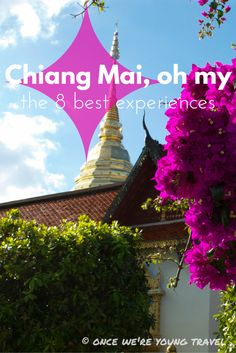 Heading to Northern Thailand?  From cooking classes to crowded markets, you won't miss the 8 best experiences in Chiang Mai!