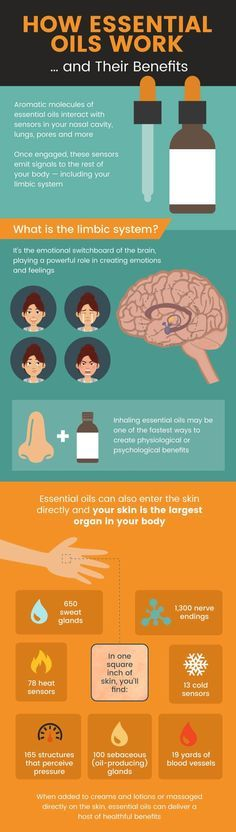 This is a great infographic. to learn how essential oils work. Easy to digest. The compounds in essential oils can get into our cells - even crossing the blood-brain barrier! - to provide them with extra support. Essential Oils Guide, Essential Oil Blends, Young Living Oils, Young Living Essential Oils, Doterra Essential Oils, Essential Oil Diffuser, Frankincense Essential Oil Uses, Frankincense Oil, Oil Benefits
