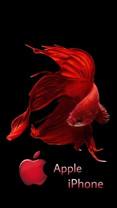IPhone 6s Fish Red Wallpaper