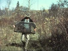 Flying beavers might sound like a ridiculous idea but it was actually an Idaho reality back in 1950. (Photo: The Idaho Historical Society and The Department of Fish and Game/Global News)